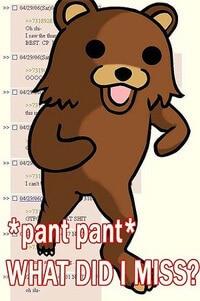 Pedo Bear Kit Kat