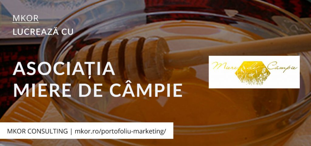 studiu-piata-strategie-marketing-miere
