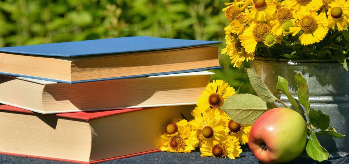 lectura-vacanta