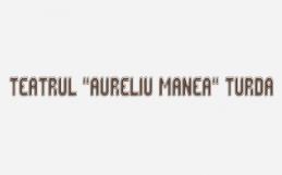 cercetare-calitativa-teatrul-aureliu-manea