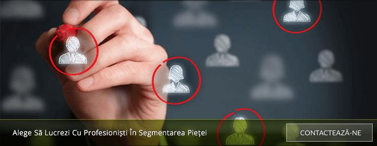 profesionisti-segmentarea-pieței